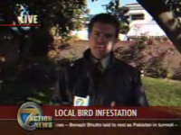 Bird poops in news reporter's mouth